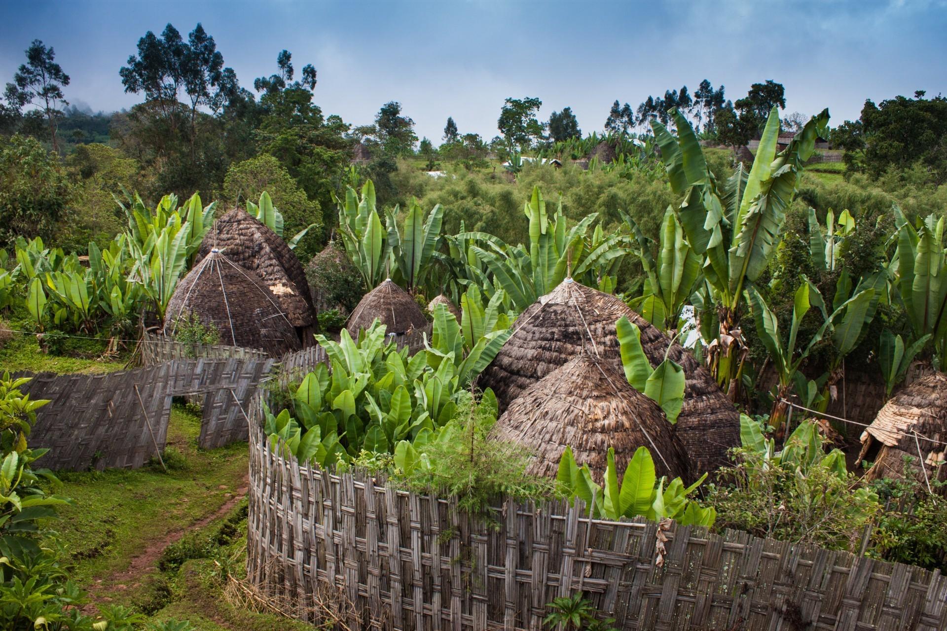 Эфиопский Кочо - хлеб из-под земли